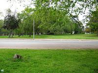 prado Montevideo Uruguay Park meadow