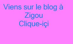 Bannière Zigou