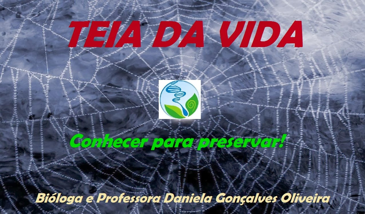 TEIA DA VIDA - CONHECER PARA PRESERVAR!