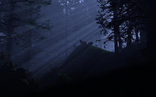 Light Rays In Dark Forest