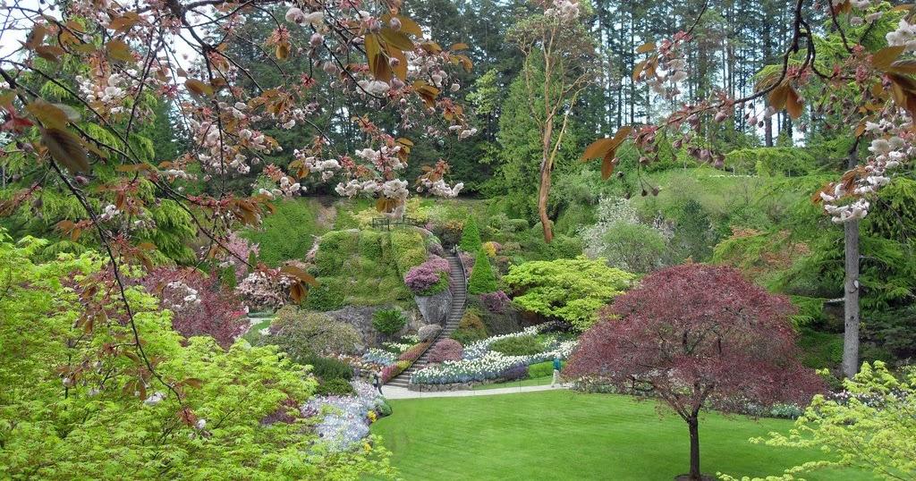 Banco de imagenes exuberantes jardines con plantas y for Plantas y jardines