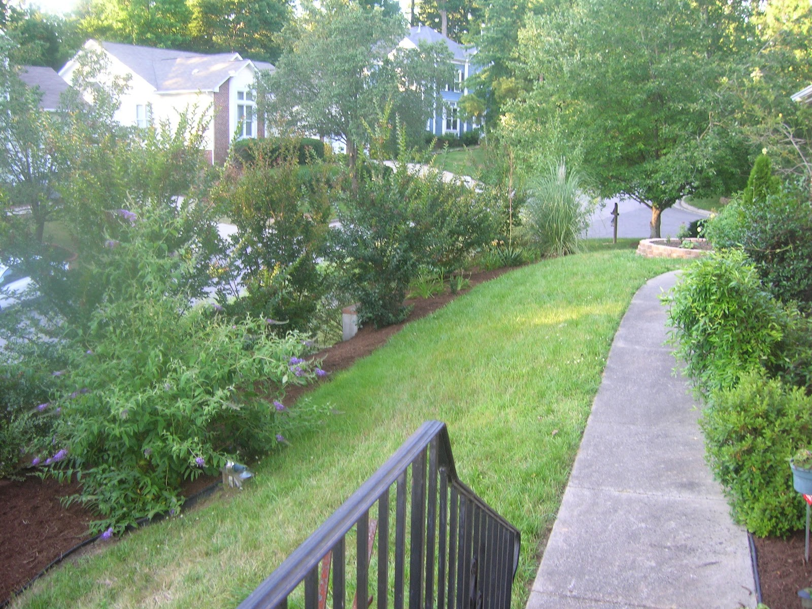 Durhamonthecheap Create Your Own Butterfly Garden At Your