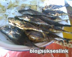 ikan bakar pujakesuma
