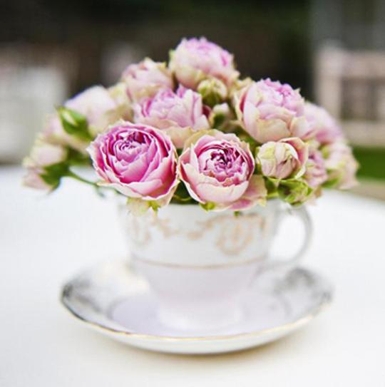 pink roses in a vintage teacup