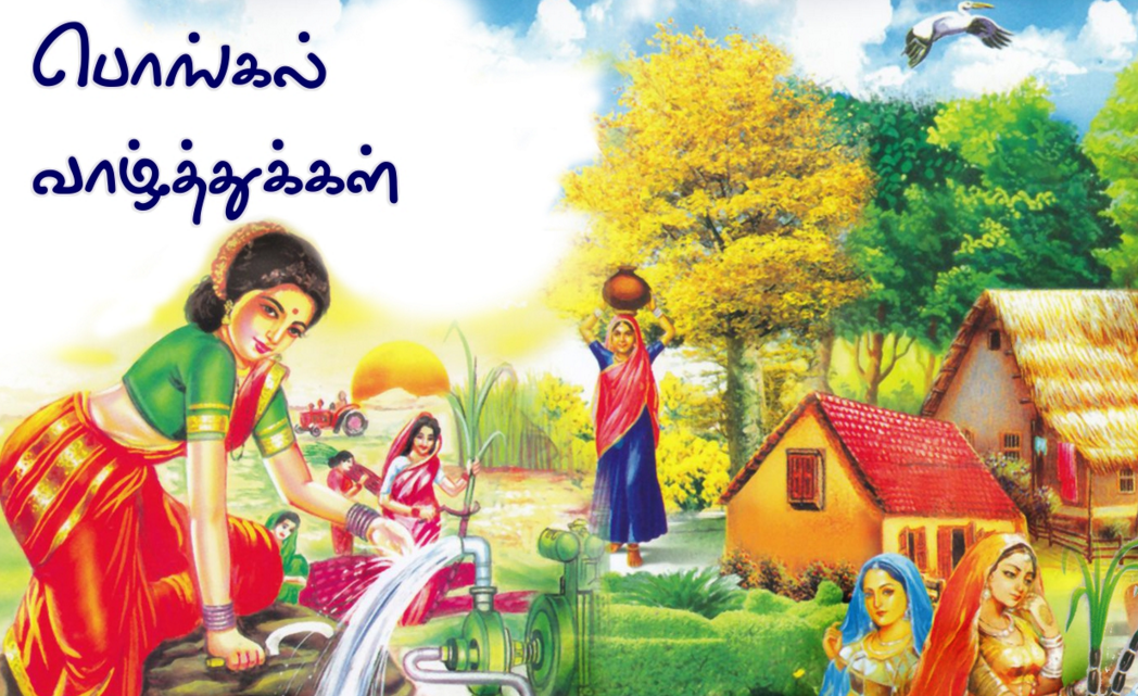 pongal festival essay in tamil language Pongal festival essay  thai pongal image 2016 sms can get benefit to attract crows tamil nadu great collection of pongal festival and fitness march 19,.