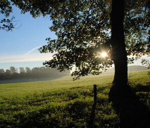 October morning. Stock Photo credit: Alfi007