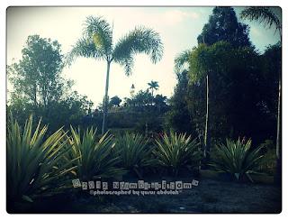 Selayang Pandang Selo Belah