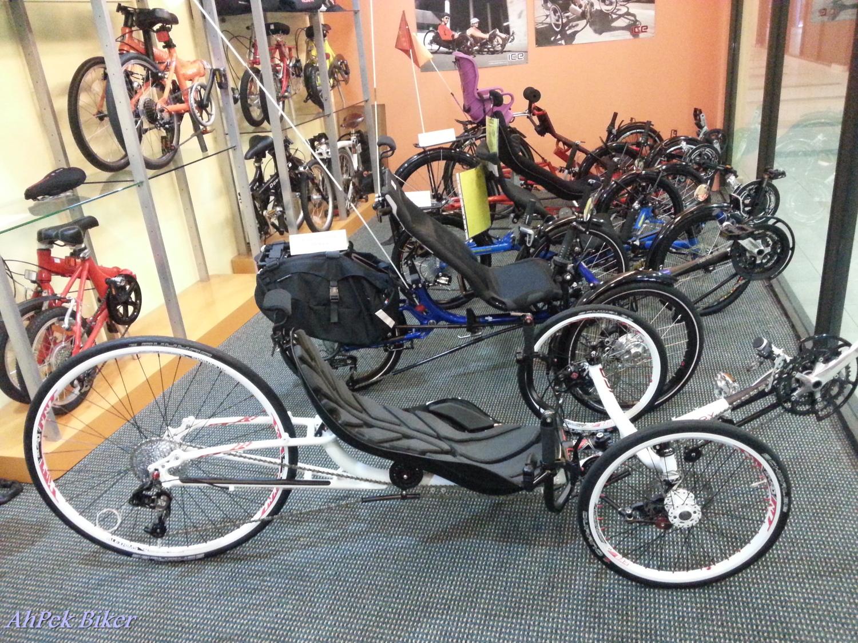 Ahpek Biker Old Dog Rides Again Buying My 3rd Foldie