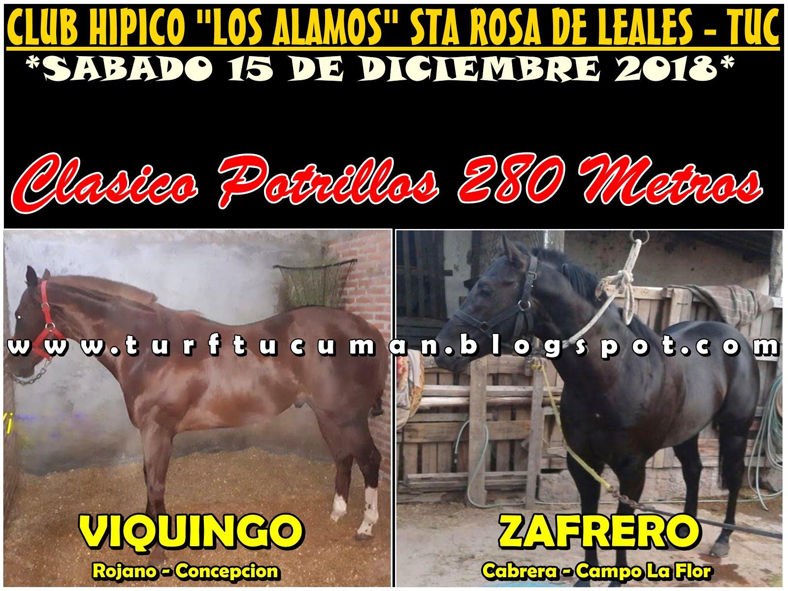 VIQUINGO VS ZAFRERO