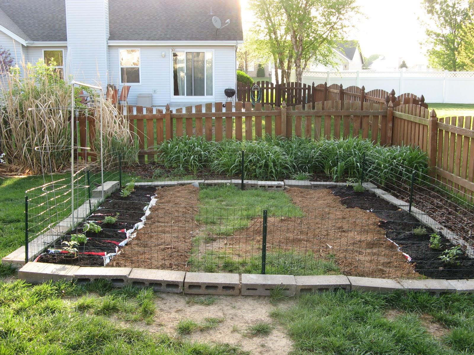 french hollow farm the backyard veggie garden is underway