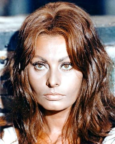 101 best images about mi sophia on pinterest icons marcello mastroianni and actresses - Sophia Loren Hair Color