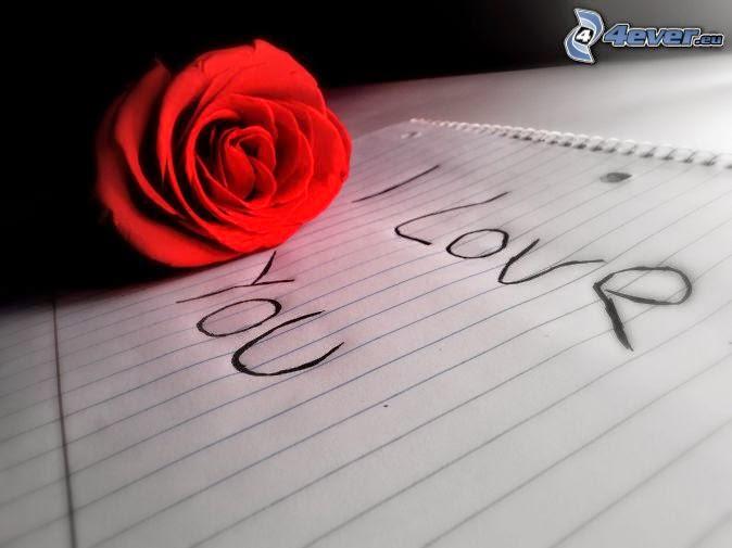 imagenes bonitas con frases, imagenes lindas de amor
