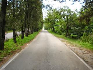 road pic