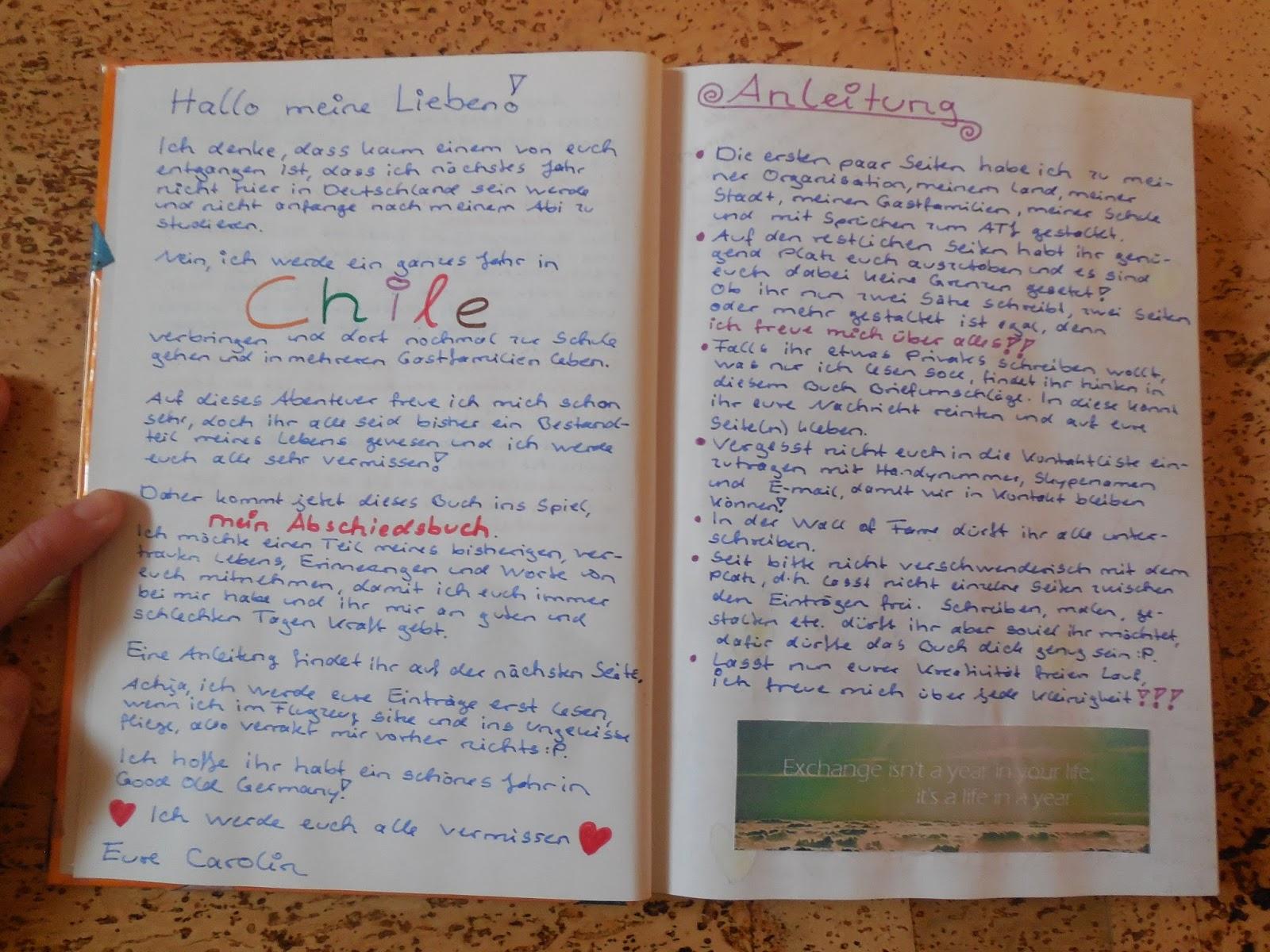 caro's gap year in chile!: november 2015