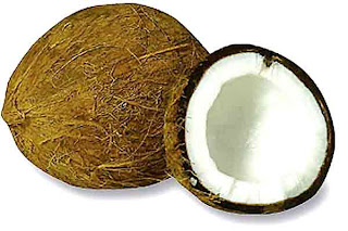 health_benefits_of_eating_coconut_fruits-vegetables-benefits.blogspot.com(8)