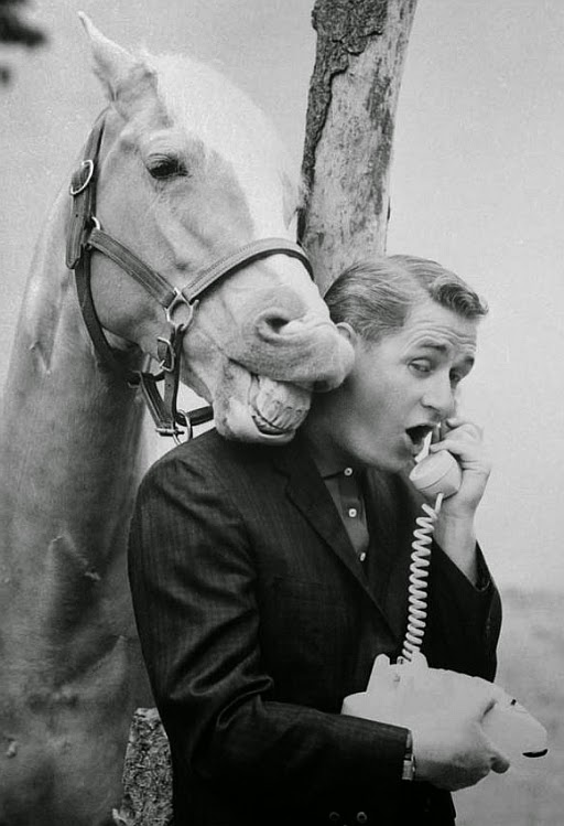 Retro Kimmer's Blog How They Trained Mr Ed To Talk. Asthma And Allergy Clinic Boost Your Business. Turpen Insurance Plainview Tx. Accredited Online Graduate Degrees. Medicare Supplement Plans Massachusetts. Longest Battery Life Cell Phone. Magento Recommendation Engine. Treatment Centers In Washington State. Euthanasia Technician Certification