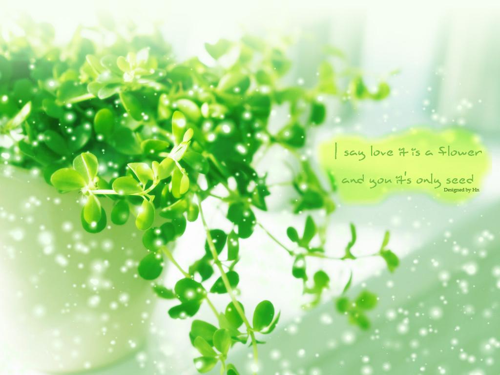 Được đăng bởi Phạm Trường At 5/16/2012