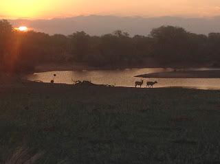 Wat verder prachtig was, was de zonsondergang bij Olifants waar ik nog snel even een paar foto's van heb gemaakt.