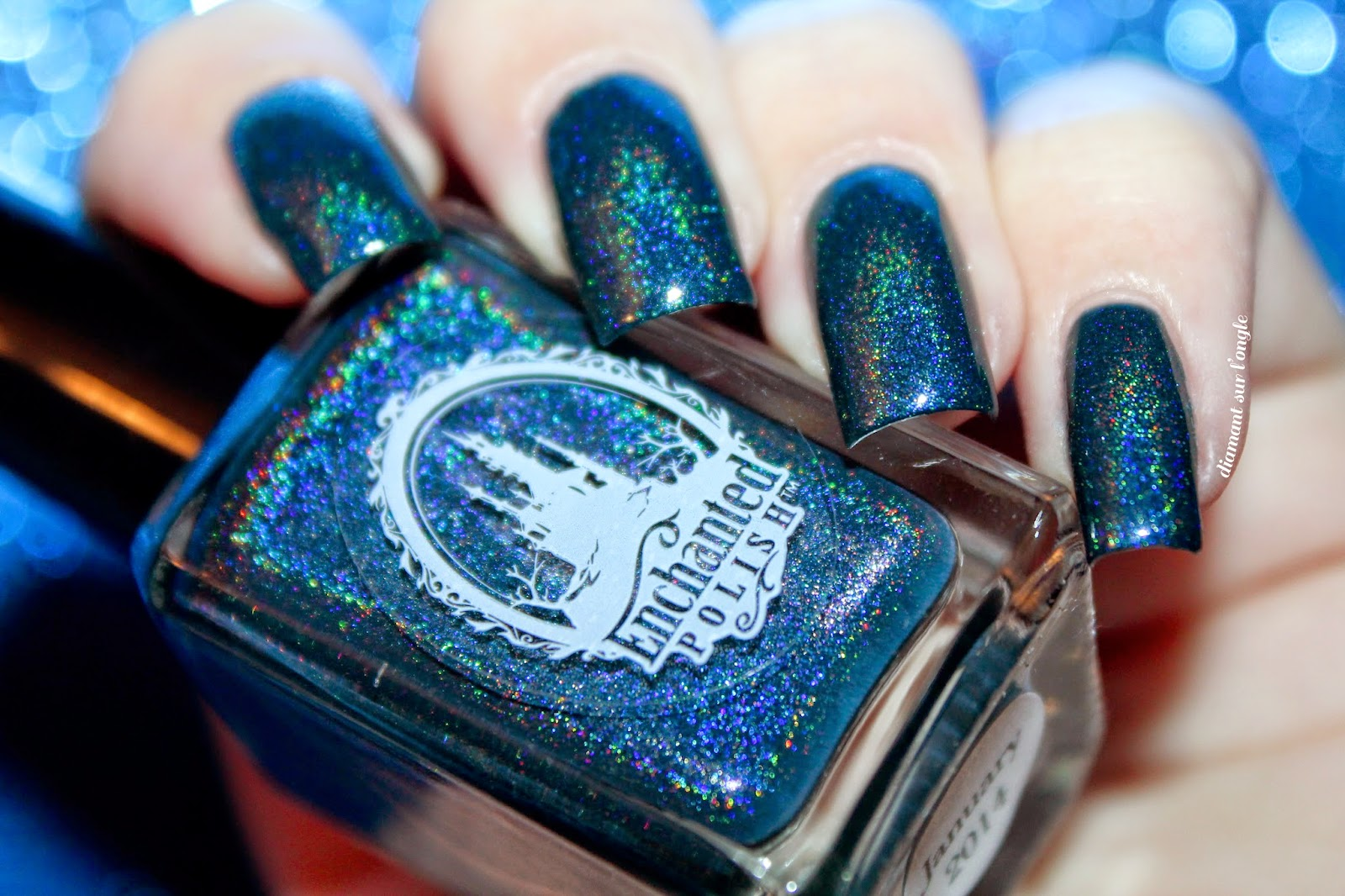 Swatch of January 2014 by Enchanted Polish