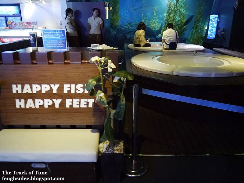Siam ocean world happy fish happy feet the track of time for 99 5 the fish