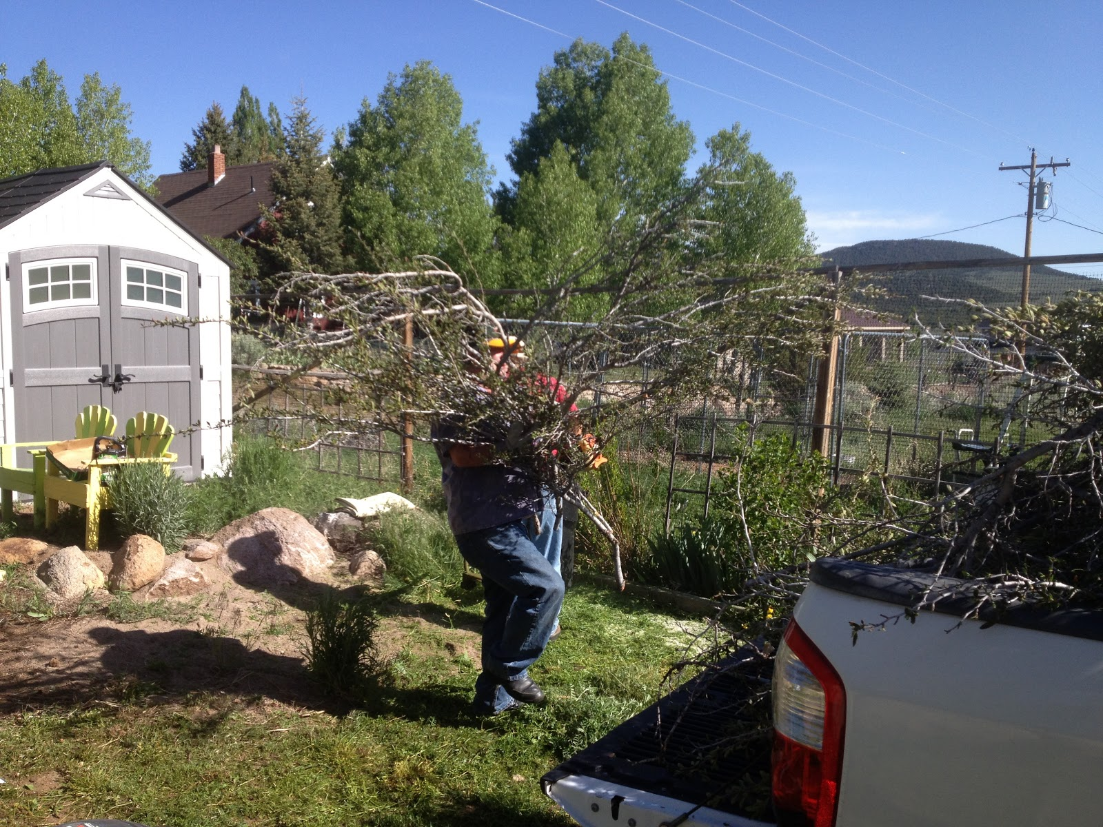 pine valley guys Lawn aeration with lawn aeration guys in pine valley, ut to help maintain a proper thatch level in the lawn thatch,.