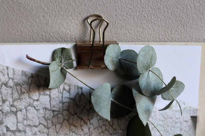 klipsi ja eukalyptus