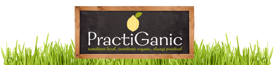 PractiGanic: Vegetarian Recipes and Organic Living