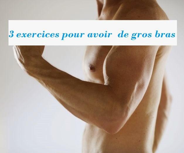 3 exercices pour avoir  de gros bras