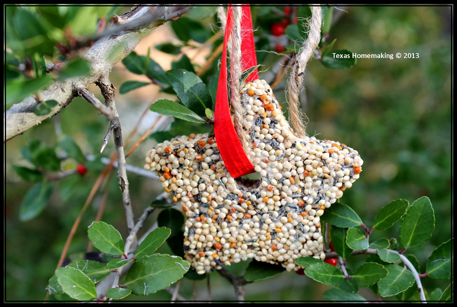 Texas homemaking 2013 crafting with kids easy birdseed ornaments solutioingenieria Image collections