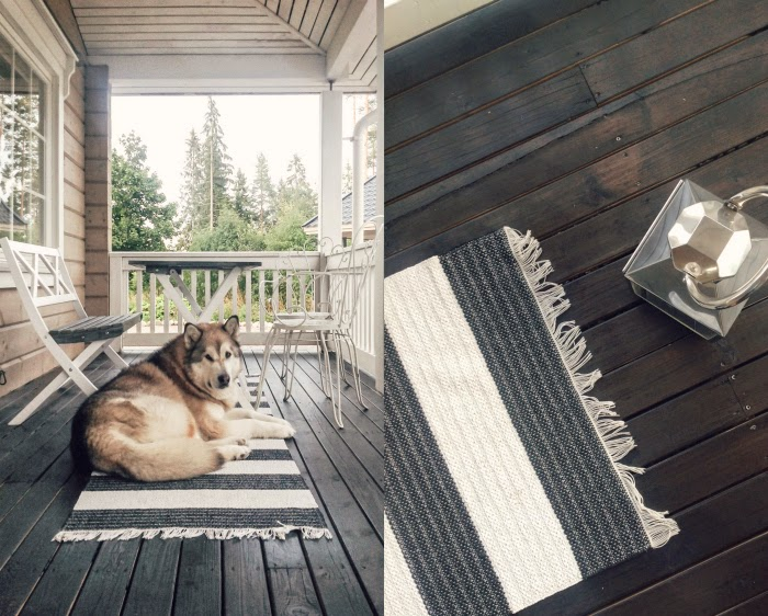 black deck oil, terassi mustaksi, alaskan malamute sable, alaskanmalamuutti, silver lantern