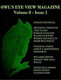 OWL'S EYE VIEW MAGAZINE VOLUME 8 - ISSUE 1