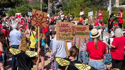 March Against Monsanto 10/12/13 San Diego