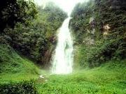 Visite Amazonas
