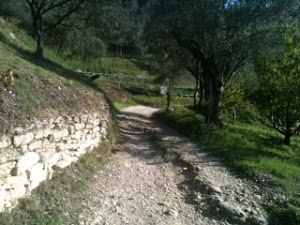 Salviamo il Piccolo Stelvio e sentiero natura di Santa Maria in Stelle (VR)