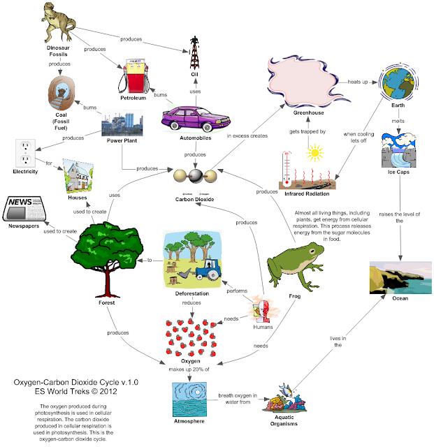 Carbon oxygen cycle vatozozdevelopment carbon oxygen cycle ccuart Images