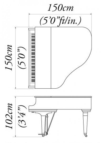 Real Grand Piano Baby Dimensions Inches Specifications Yamaha Sizes