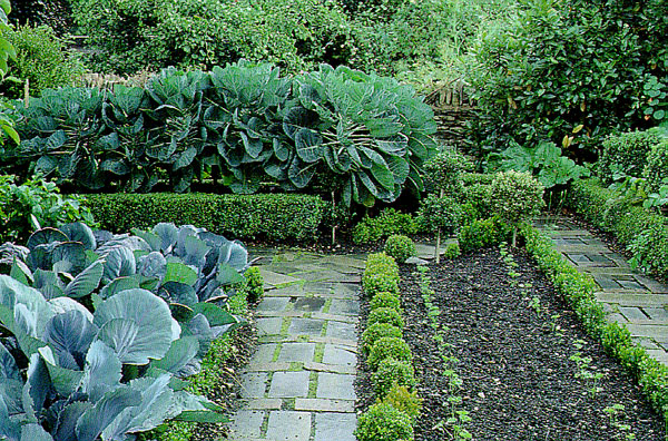English kitchen garden images for Kitchen garden design