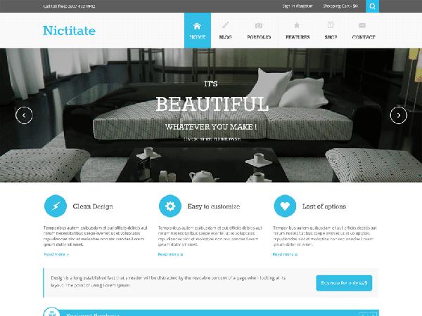 Nictitate Free WordPress theme 2014