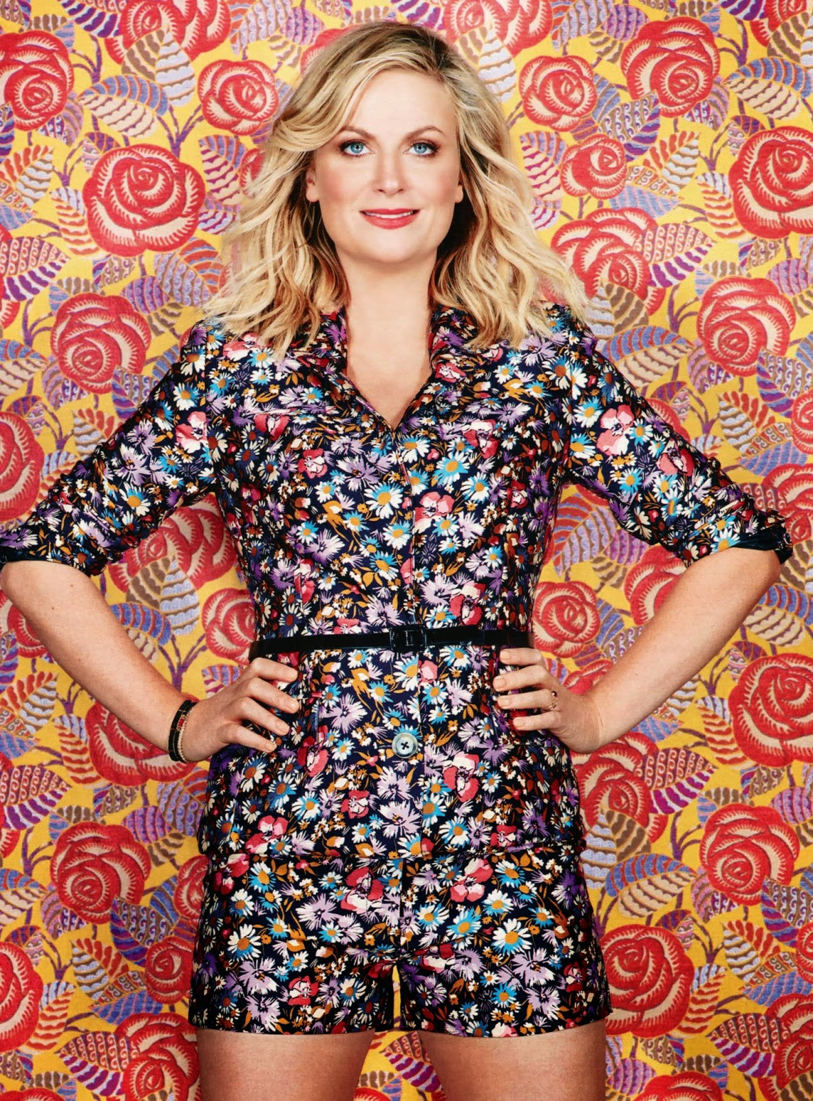 Amy Poehler HQ Pictures Ladies Home Journal US Magazine Photoshoot March 2014