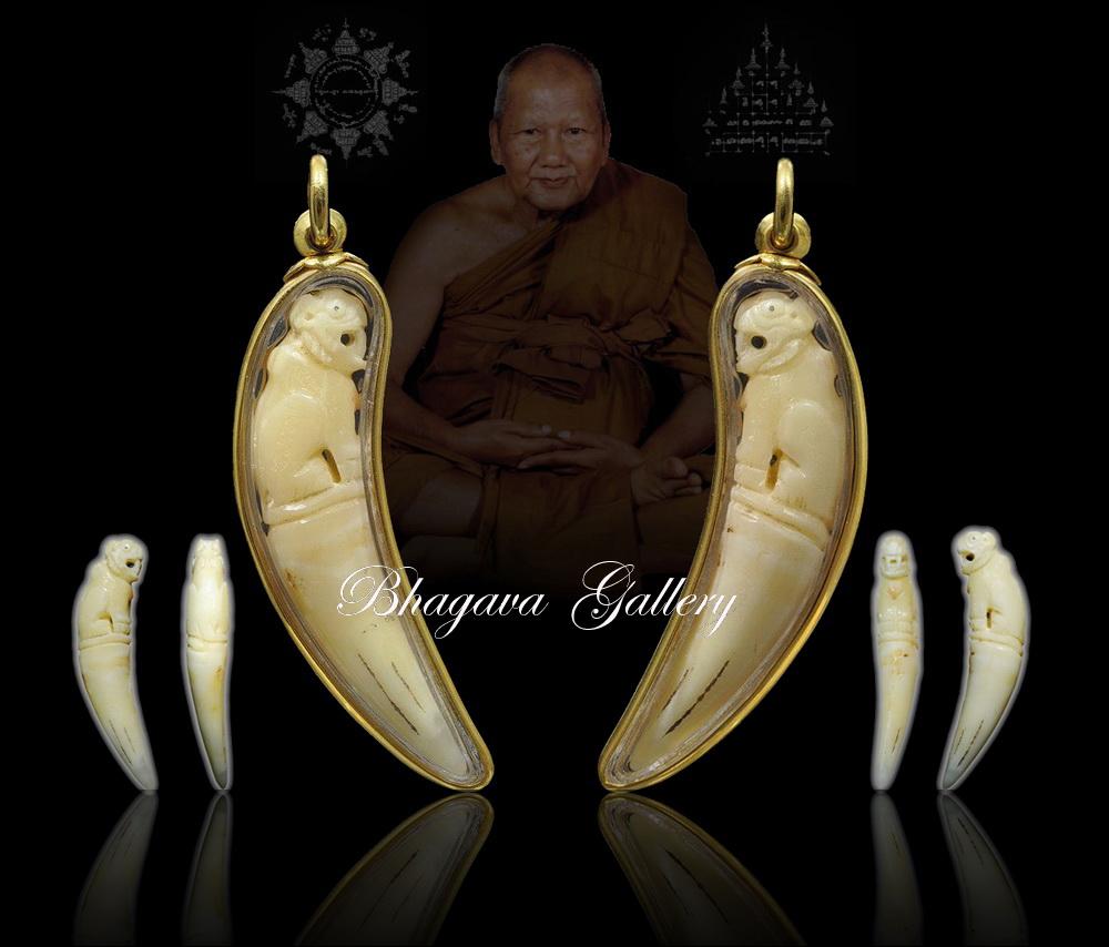 BhagavaGallery: LP Pern Wat Bang Phra, Tiger Tooth (Kiao ...