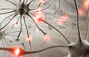 Tentang Epilepsi : Pengertian, Penyebab Dan Pengobatan Penyakit Epilepsi