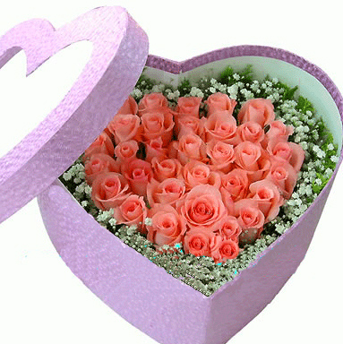 flowers for flower lovers.: valentine day flowers wallpapers., Ideas