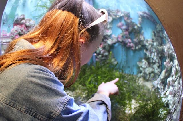 georgina-minter-brown-georgie-frequencies-holiday-bournemouth-birthday-trip-sea-coast-ocean-oceanarium-aquarium
