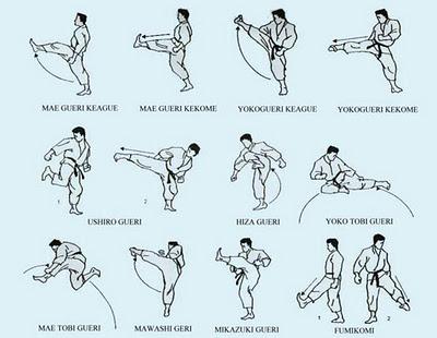 Boxe chin s san shou wushu dicas for Kung fu technique de base pdf