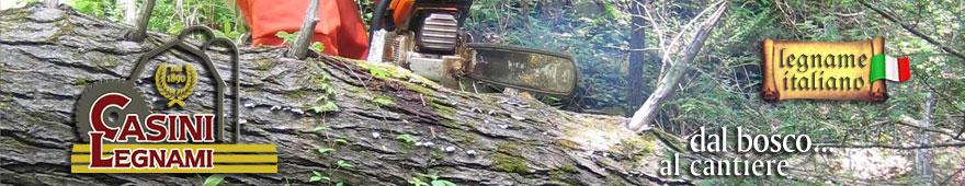 Casini Legnami - Produzione legname da costruzione e da lavoro in Firenze - Toscana - Italia.