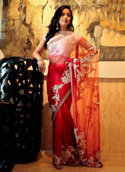 Saree Collection for EID 2014