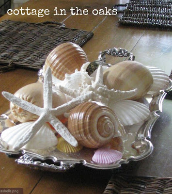 Decorating with Seashells, Ideas and Tips, cottage in the oaks