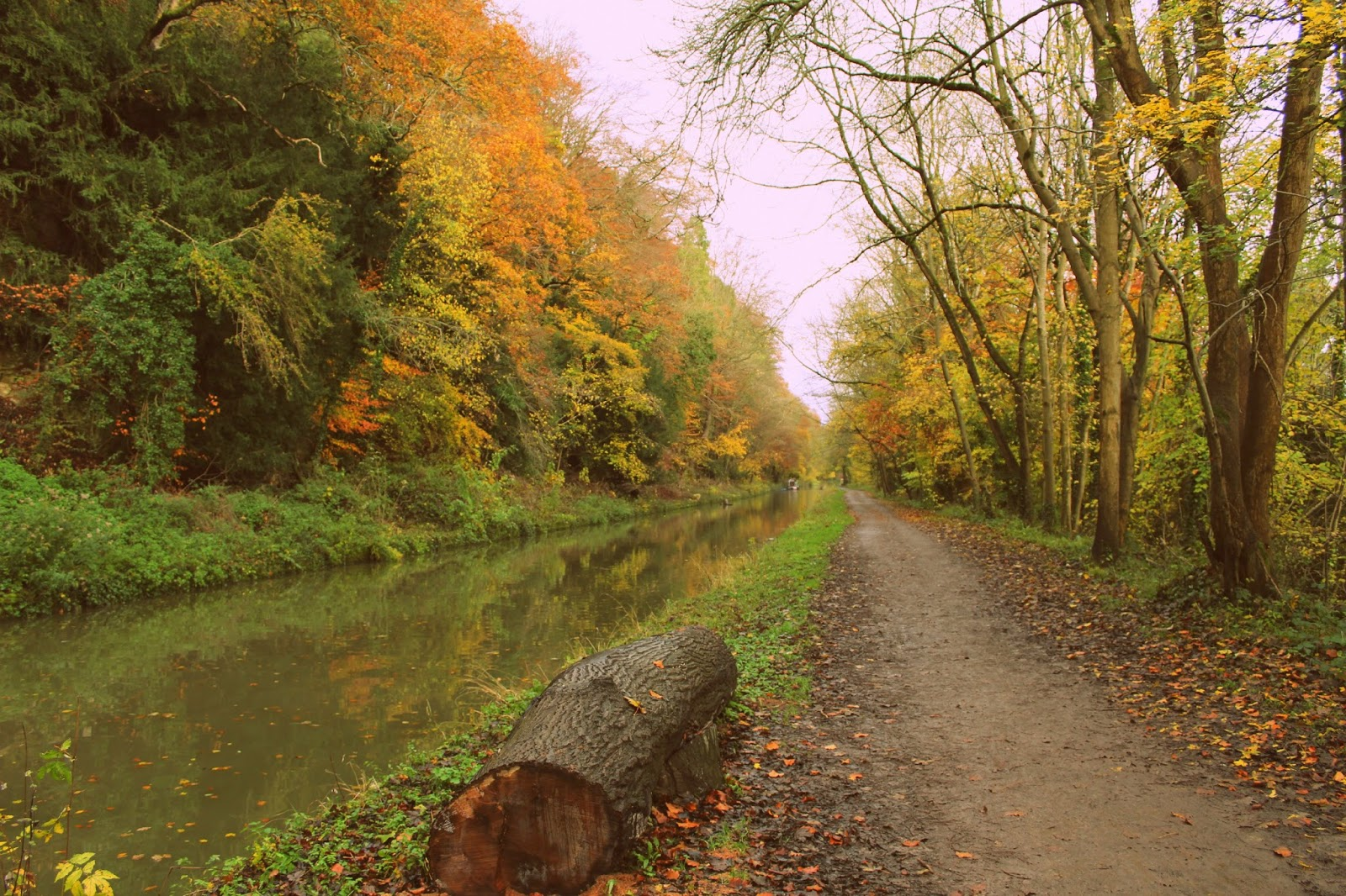 Canal walk // 76sunflowers