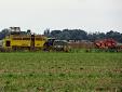 Sugar beet harvest: Ropa Tiger VS Holmer Terra Dos T3