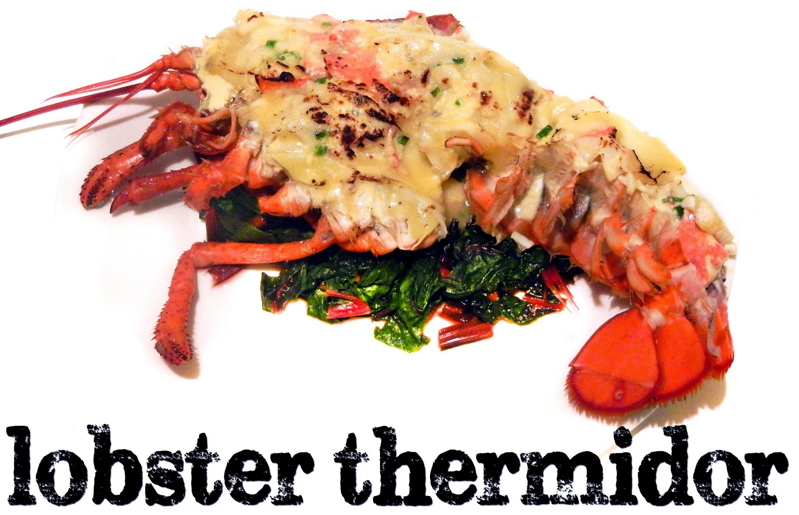 Lobster Risotto Lobster Cassoulet Lobster Chowder Lobster Thermidor